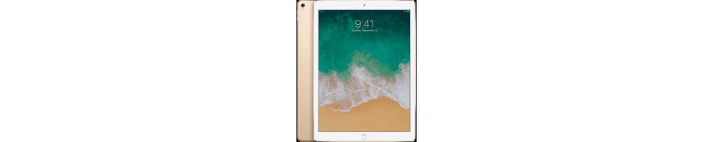 Reprise iPad Pro 12,9