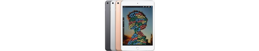 Reprise iPad Mini 5
